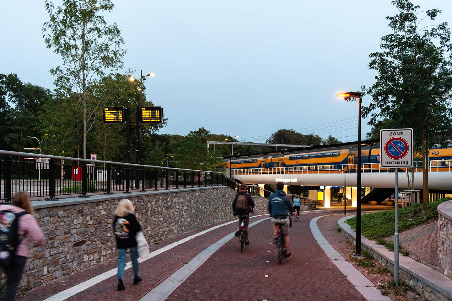 A mixture of TECEO luminaires with white and amber LEDs light Driebergen-Ziest train station and surroundings to protect people and local biodiversity